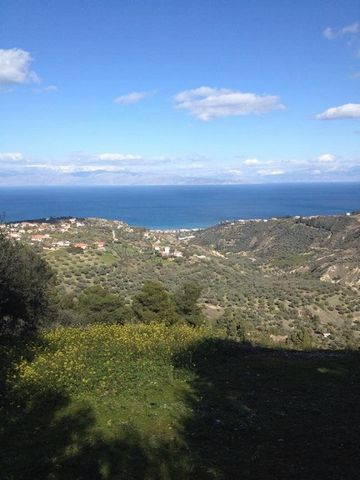 Plot of land for sale with an area of 3000 sq.m. at the  Ambelos village, Akrata, inside the settlement of Ambelos, 800 meters from the central square. The plot offers panoramic views of the Gulf of Corinth. There are 48 olive trees on the land, whic...