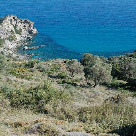 EVIA, Municipality of Avlonos, Korasida. For sale a plot of land of 3.030 sq.m., out of city plan, sloping, even, builds 400 sq.m electricity, water, free, panoramic views of the Aegean Sea, 700 meters from Korasida beach. Price 65,000 €