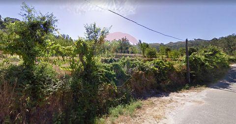 Terreno para venda por 300.000 EUR ou PERMUTA, (Há a possibilidade de ser destacado e ser vendido só metade do terreno). Fica situado na freguesia de Folhada, a 8 quilometros do centro do Marco de Canaveses, a 50 minutos do centro do Porto (60 quilom...