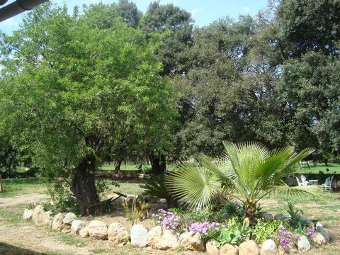 Welcome to this lovely cottage for 4 people and with private pool on the outskirts of Búger. It offers a rustic style and the homely warmth that you need to enjoy an unforgettable experience. This wonderful finca accommodates a simple but really beau...