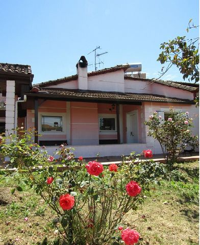 Savalia, Amaliada. For sale detached, ground floor house of 180 sq.m. – 138 sq.m. main house and a 42 sq.m. guest house with its own kitchen, bathroom and bedroom. The house consists of lilving room, kitchen, office room, 3 bedrooms, bathroom. Built ...