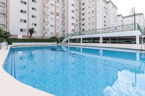 Beautiful apartment with shared pool for 2-3 people in Playa de Gandía. After a long beach day, take a dip in this fantastic chlorine shared pool. It sizes 14 x 9 metres and its depth is between 1.4 and 1.95 metres. It includes a children pool sizing...