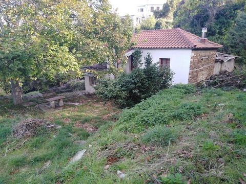 Labinou, Tsagkarada, Pilio. For sale a house of 80 sq.m. on the plot of 1450 sq.m. The house was built in 1950 and the roof and flooring were renewed in 2015. The house consists of a living room with a fireplace, a bedroom, a bathroom and a kitchen. ...