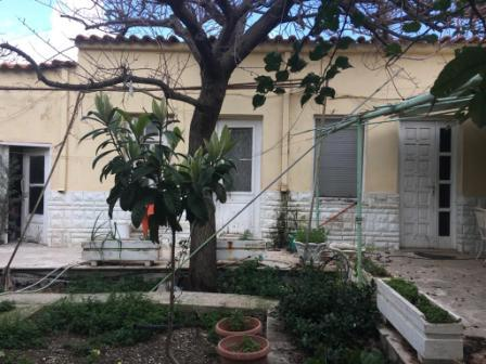 Ierapetra: The main house is 80m2 and the other buildings are 50m2 located on a plot of 300m2. The house is on one floor and consists of a bedroom, a bathroom, a kitchen and a living room. It also has the ability to turn the other rooms into one or t...