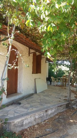 Piskokefalo A house with garden and olive trees in Piskokefalo-Sitia. The house is on a plot of 3.600m2 which has different fruit trees and olive trees. The house is 45m2 and consists of an open plan living area with kitchen, a bedroom and an outdoor...