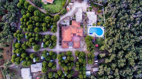 The following real estates, located in Greece, in the Epirus province, near Preveza, are for sale: a) a camping ground, with total surface of about 14.000 m², with approximately 100 pitches for tents, caravans or campers, 20 masonry bungalows, swimmi...