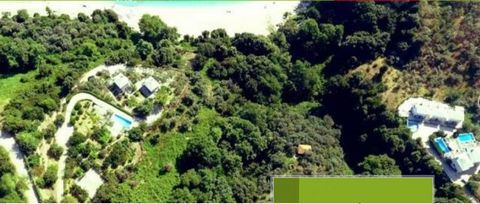 For sale, at the seaside settlement of Agios Ioannis in East Pelion, in Plaka location, a seaside buildable parcel with a total area of 12.166 sq.m. The buildable area (declassified) is 5.293 sq.m. With a building capacity of 205 sq.m. The property h...