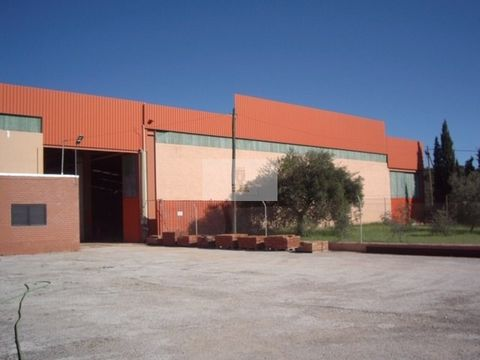 Warehouse located in Santa Catarina Fonte do Bispo, 7 KM to the entrance on the A22 towards Spain. With 7 meters in height, water abstraction itself. Mains water, gas tank with a capacity of 22,000 liters.Building area: 2520m2.Uncovered area: 1671m2