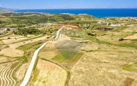Land for Sale at 750000 EUR Land with 7,000 square meters, in Santo Isidoro - Ericeira, with sea view, with potential for investments and construction of villas. With a construction area of 5,013m², according to the local city council, the land will ...