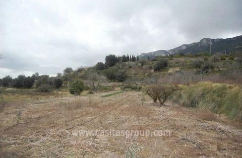 A Superbly well priced Urban Plot on the Outskirts of a Village in the popular Vall de la Gallinera, just 30 minutes from the coast and very affordable. With the Infrastructure in place this would be a wonderful spot for a Country retreat with all of...