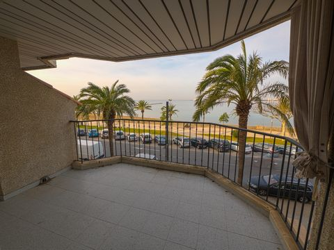 Comfortable apartment with a capacity for 4 people. It has a private terrace with views of the Bay of Roses. It is located in the center of Roses, in the neighborhood there are all kinds of shops and restaurants where you can enjoy the best fresh fis...