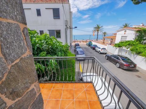 Comfortable apartment with a capacity for 6 people. It is located in the center of Roses, near there are all kinds of shops and restaurants where you can enjoy the best fresh fish and seafood from the Roses bay. The sandy beach is only 50 meters away...