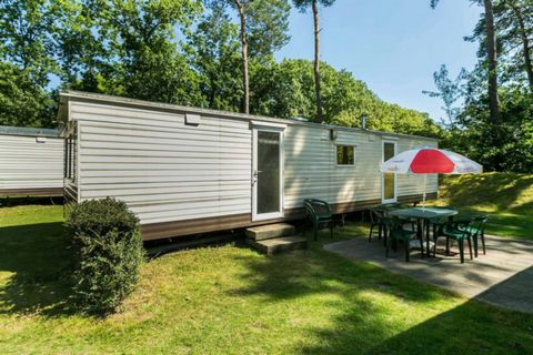 Holiday Park Arnhem is very suitable for lovers of peace and nature due to its location on the Veluwe. In the woods around the park it is wonderful to walk and fully enjoy nature. The swimming pool in the park, where the roof can be opened in good we...