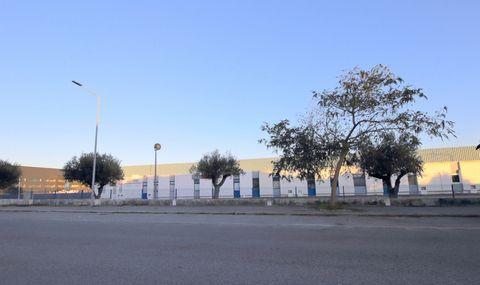 Located in Santo Onofre. Building intended for warehouse and industrial activity; Land Area 11200sqm; Construction area 4285sqm; Located on the Silver Coast, near Caldas da Rainha, Foz do Arelho, the Bay of São Martinho do Porto, Óbidos, Peniche, Pra...