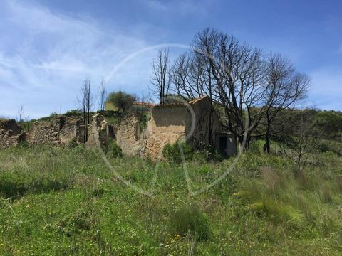It Is a land with a ruin, in a bucolic place that combines the tranquility of space with the unfowed view on the horizon, located about 35 km from Lisbon. It Has more than 3.3 ha, being situated in an agricultural and very quiet area of the Union of ...