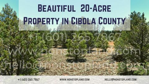 for sale land-plot in grants nm new mexico usa, real estate sales, buy property - holprop real estate ark_gjsc-t41187