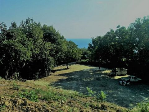 Pelion, Plaka. For sale a buildable plot of land of 6000 sq.m. in the village of Anilio in Eastern Pelion (which belongs to the Municipality of Zagora and Mouresi), just a short distance from the seaside settlement of Ag. Ioannis, in Plaka location. ...