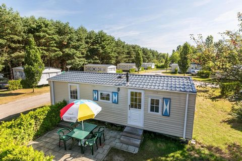 Holiday park Prinsenmeer is located near the beautiful nature area de Peel, on the edge of the village Ommel, close to the town of Asten. The park offers a subtropical indoor pool with slides, bubble bath, toddler pool, sauna and steam cabin. In summ...
