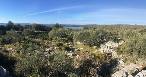 Agricultural land for sale in Prtljug bay in Lukoran on the island Ugljan. The land is 3720 m2, planted with olive trees and surrounded by stone walls. Located on the southwest side of the island, it is 150 m away from the sea and 4 km from the cente...