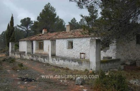 An Enormous Plot of approximately 180.000M2 of Rustic forest land, plus Olives and a myriad of vegetation. The land is terraced on one terrace is a semi-ruined building. Way off the beaten track this is a location offering peace and tranquility away ...