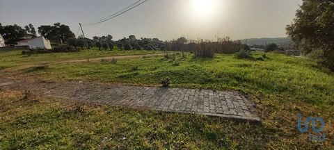 Lote de terreno para construção situado em Aldeia da Ribeira / Alcanede localizado numa sossegada encosta com uma agradável vista. Aldeia da Ribeira é uma aldeia próxima da Serra d'Aire e Candeeiros, a norte de Santarém, rodeada pelos concelhos de Po...