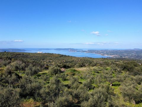 Parcel 4800 m2 with building permit up to 200m2 in one or two floors in Akritoxori, Messinia,Greece. The plot oversees Foinikounda, the Ionian Sea and islands of Sapientza, agia Marina and Schiza. The spot and the panoramic placement provide the owne...