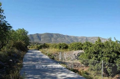 A Plot of Rustic land is offered for sale in Alcalali, with good access the plot although slightly elevated and benefitting from the surrounding panoramic views is actually completely flat. Walking distance to this popular town in the famous Jalon Va...